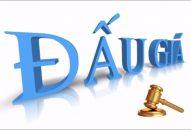 Thành lập công ty ngành nghề đấu giá tại Vĩnh Phúc